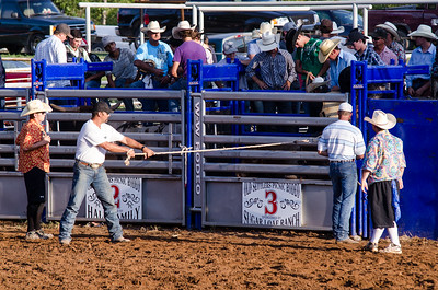 Bull-Riding-Old-Settlers-123rd