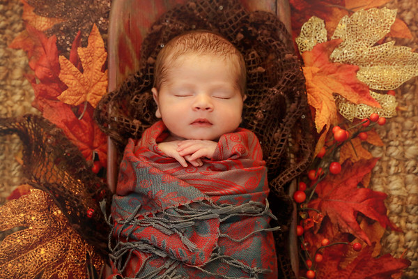 Isaac's Newborn