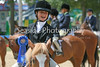 Barnstable County Fair Horse Show, July 22, 2007 :
