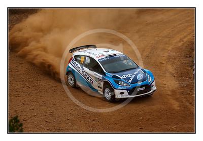 VW Rally 2010