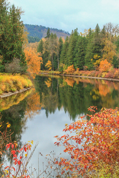 fall 2019 st maries river-1690.jpg