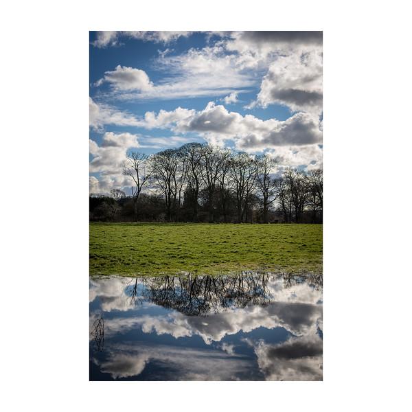 59_365_Reflection_10x10.jpg