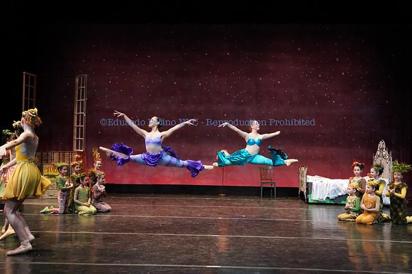 11-24-19 Metropolitan Ballet Peter and Ugly  FULL EDIT