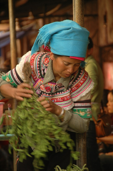 Hani Woman with Fresh Herbs - Yunnan, China