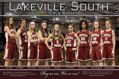 Cougars 7A Girls Basketball 2015