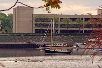 Greenwich Ct. Grass Island Harbor 5-15-13