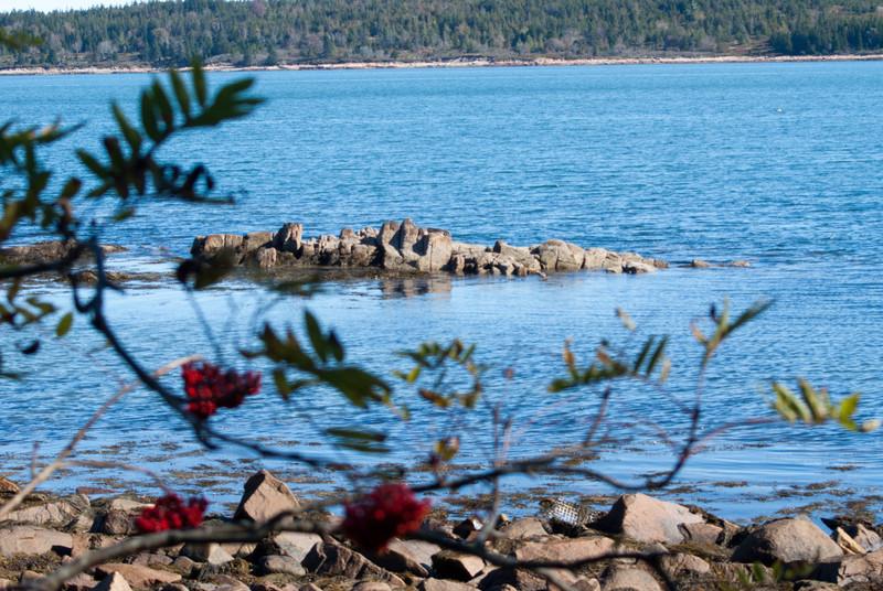 Maine Vacation-02956.jpg