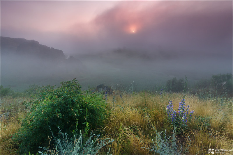 Zaporizhia Oblast | Запорожская область