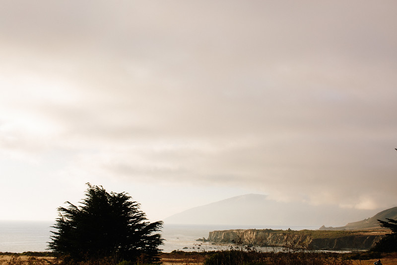 Freewaters_Big_Sur_2014_507.JPG