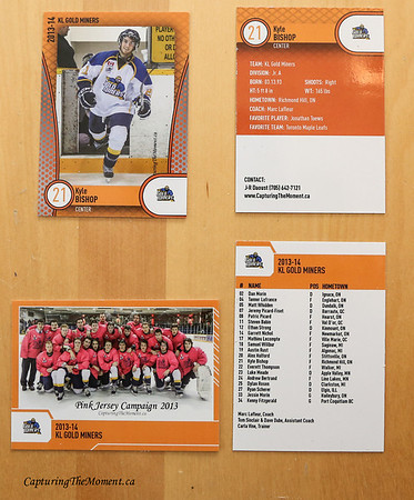 Player and Team Hockey Cards