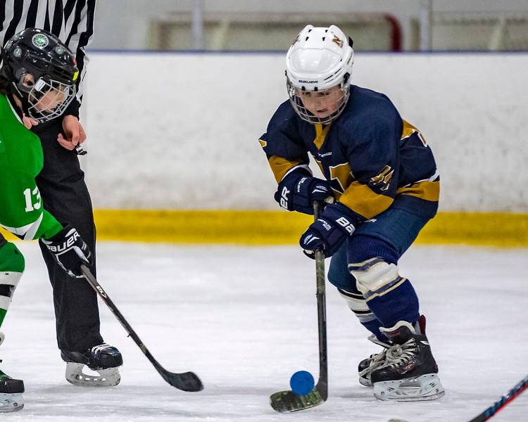 2019-02-03-Ryan-Naughton-Hockey-58.jpg