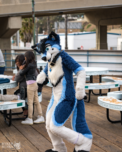 Santa Monica Pier 03-31-2018-8481.jpg