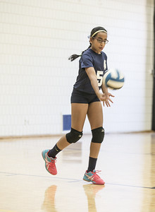 Volleyball (MS)
