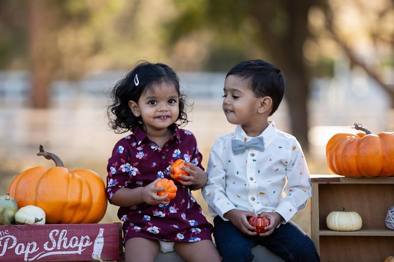 Patel Family Mini Session-11.jpg