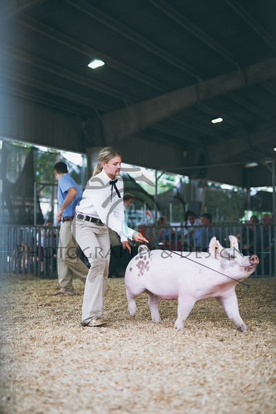 #stockshowlifestyle | 2018 County Fair Edition