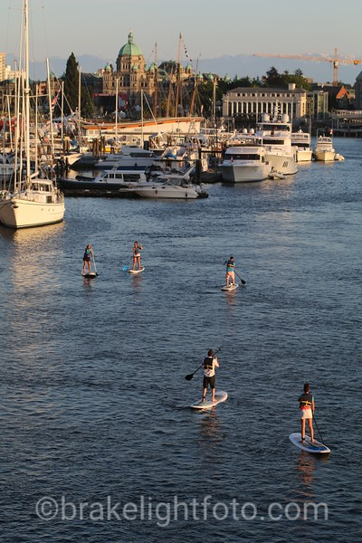 SUP inner harbour
