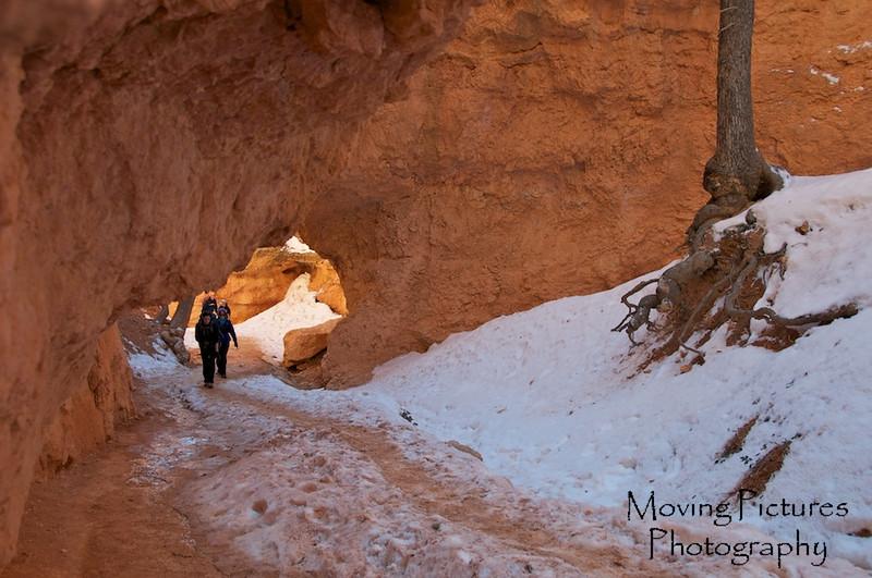 Bryce Canyon National Park - Navajo Loop Trail