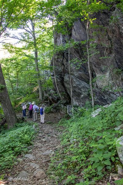 trail 062619.jpg