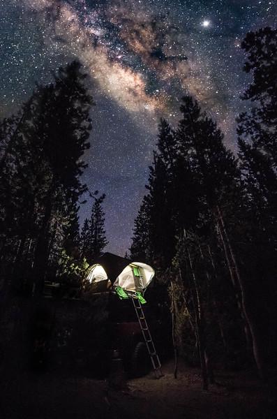 sprks_night-7.jpg