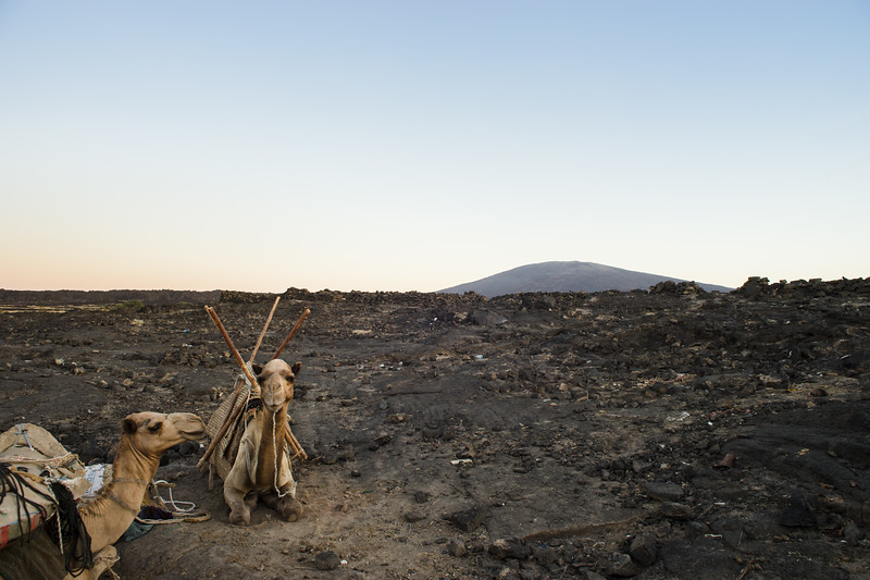 Sleeping on the ground next to the camels at the peak of the Erta Ale volcano