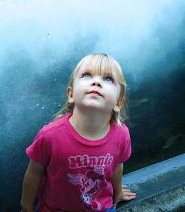 2008_Monterey