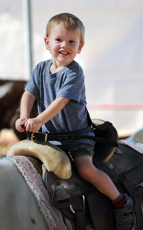 . Campbell Ballard, 2, from Valley Village enjoys the pony ride.  Underwood Family Farms in Moorpark, CA hosted its Friends of the Farm weekend, launching its Fall Harvest Festival, which runs through Halloween.  The Saturday, September 28, 2013, event benefits the Ventura County Sheriff\'s & Fire Departments.  (Photo by Dean Musgrove/Los Angeles Daily News)