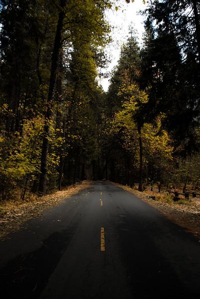 Half Dome Village Road