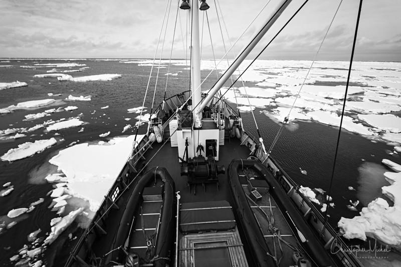 5-24-17014770nw spitsbergen.jpg