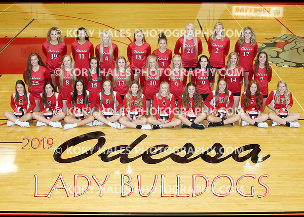 2019 OHS Volleyball
