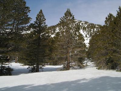 Freedom Fest: Jean Peak (10,670) / Mt. San Jacinto (10,836) / Miller Peak (10,405) - Feb 5, 2011