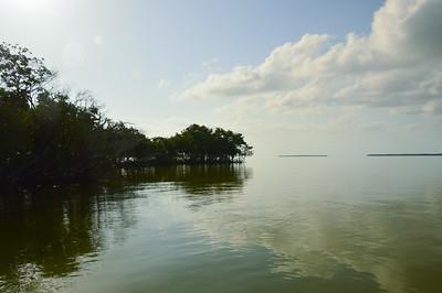 Everglades Fishing - June 24, 2019