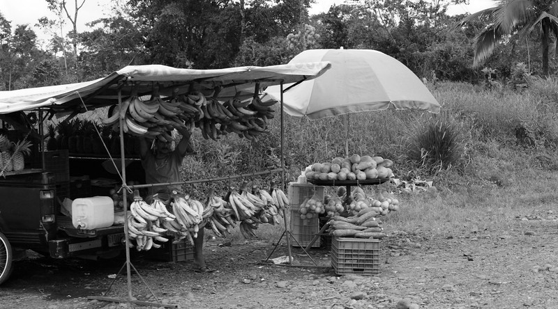 costa_rica_roadside_fruit_2.JPG