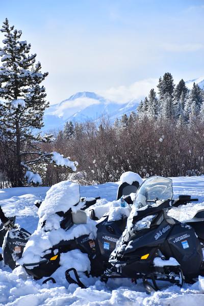 Snow-041.jpg