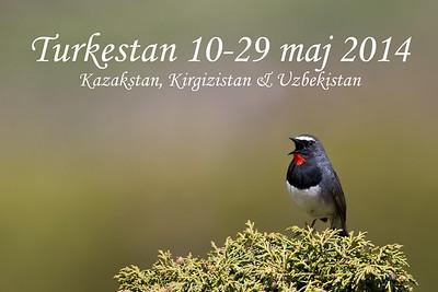 Kazakstan, Kirgizistan & Uzbekistan maj 2014