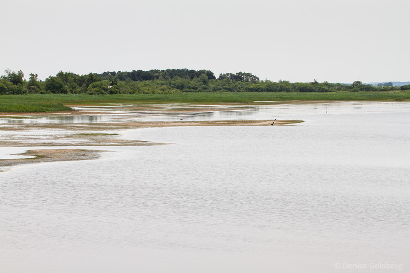 on the inland side of the refuge