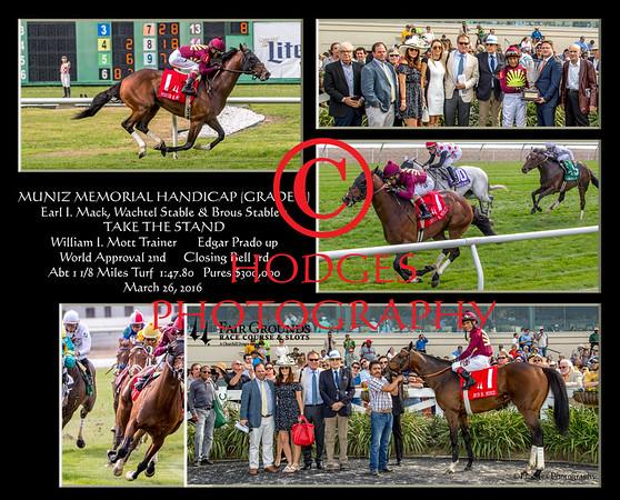 2016 Muniz Memorial Stakes