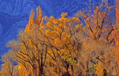California Rt 395 above Lone Pine