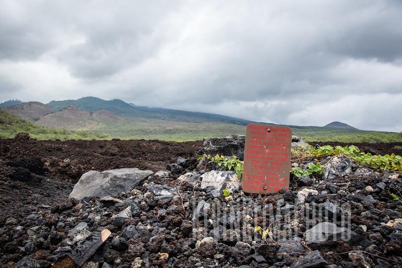 Maui2016-102.jpg