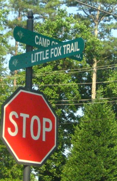 Cumming GA Community Fox Creek (3).JPG