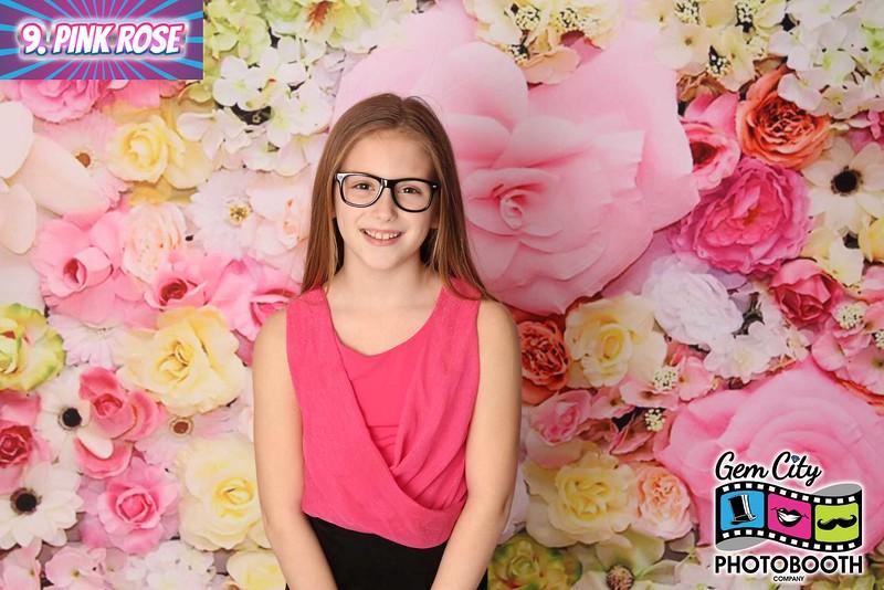 9. Pink Rose