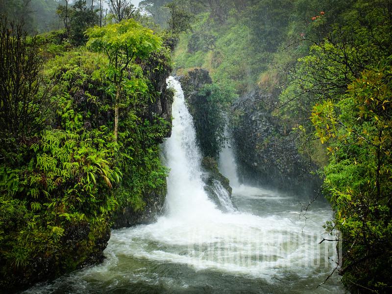 Maui132.jpg