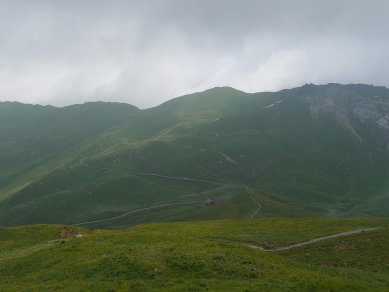 @RobAng 2013 / Bergspaziergang Hochybrig, Muotathal, Illgau, Kanton Schwyz, CHE, Schweiz, 1744 m ü/M, 2013/07/07 13:56:49