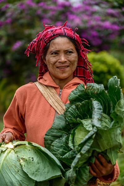 cabbage lady.jpg
