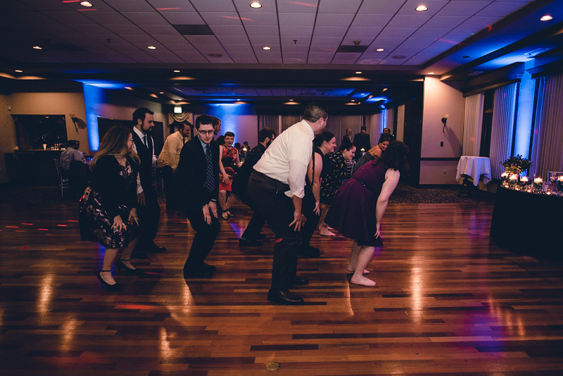 Chicago Wedding Engagement Photographer 2047.jpg