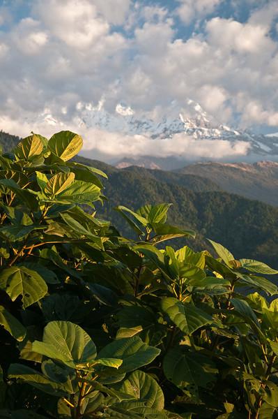 Pokhara-010.jpg