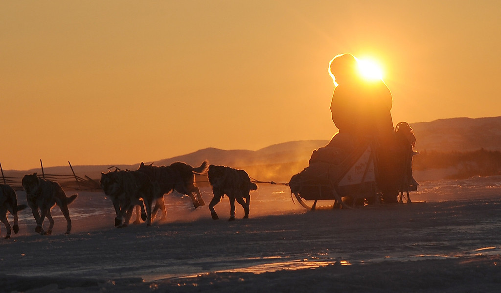 . Iditarod musher Michelle Phillips, from Tagish, YT, Canada, arrives at the Unalakleet checkpoint at sunrise during the 2014 Iditarod Trail Sled Dog Race on Sunday, March 9, 2014. (AP Photo/The Anchorage Daily News, Bob Hallinen)