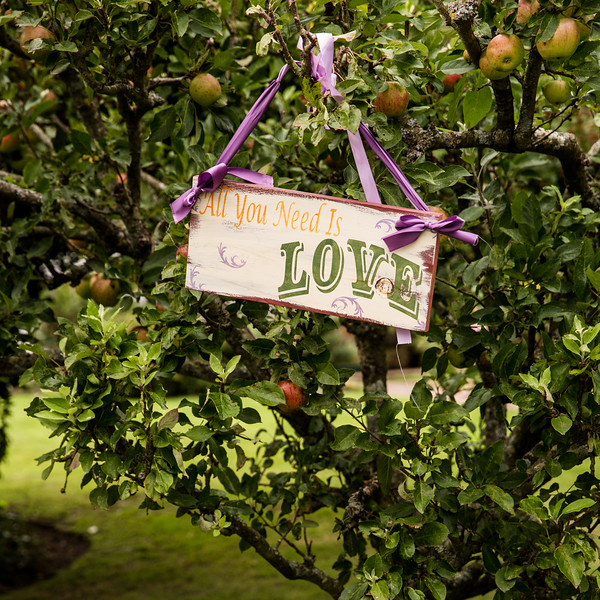 Wedding decor.  All you need is love sign on tree.