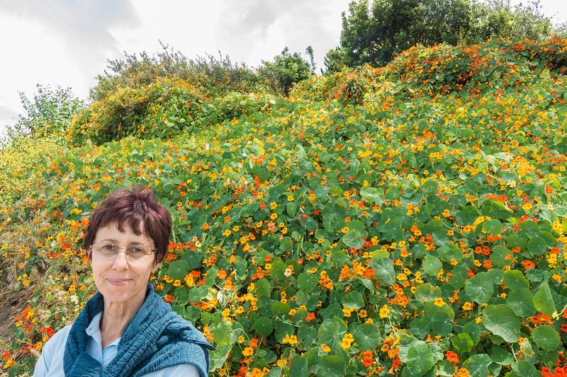 Beautiful woman near flowers