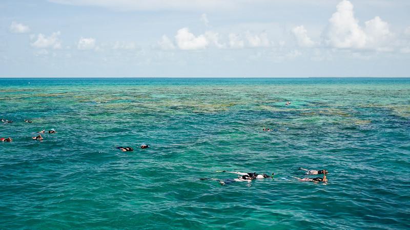 Key West Sightseeing-88.jpg