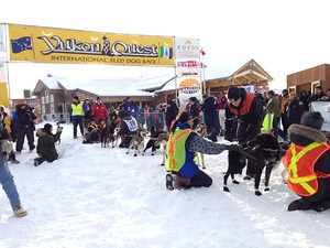 Starting line of the Yukon Quest